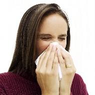 蓄膿症 アレルギー性鼻炎